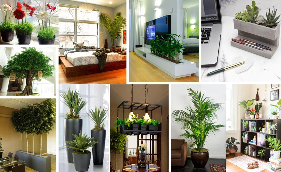 green theme home improvement ideas