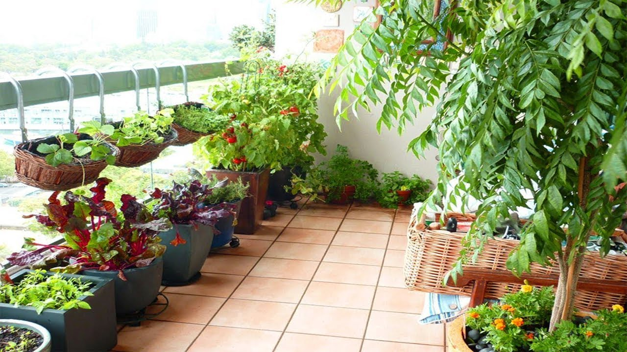 Designing your balcony garden the right way - Latest Real ...